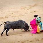 bull-fighting-spain