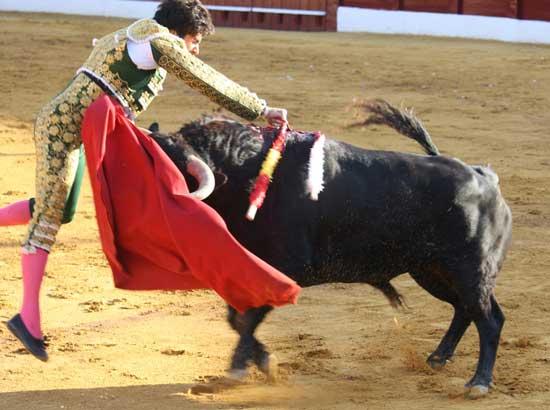 bull-fighting