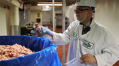 Raw Chicken inspection