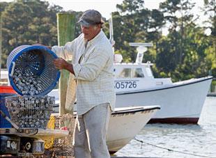 cruelty-of-fishing
