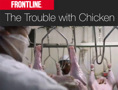 PBS Frontline - Trouble With Chicken