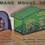 Try Using a Humane Mouse Trap