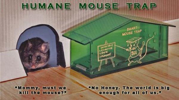 humane-mouse-trap
