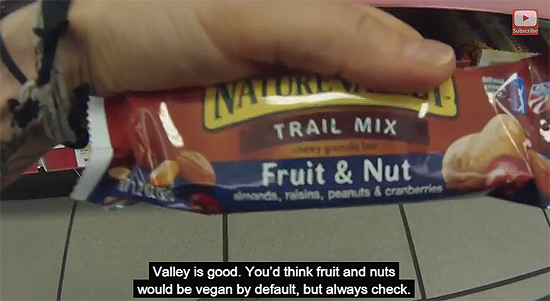 Vegan granola bars while traveling