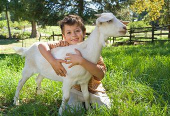 veganism-for-better-environment